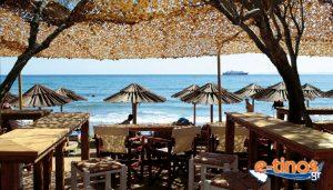 Summer Drops - Beach Bar